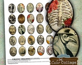 Macabre Digital Collage Sheet, 30x40 Ovals, Halloween Collage Sheet, Vintage Macabre, Vintage Gothic, Oval Images, Cameo Images, Cabochon