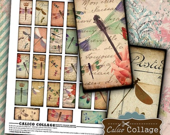 Dragonflies Digital Collage Sheet 1x2 Domino Images for Dominoes, Bezel Settings, Decoupage Paper, Digital Download, Printable Paper