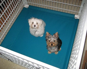 Dog Beds, Custom Canvas Dog Beds, Dog Cot, PVC Pet Beds, 13 Colors 36x36x8 Small To Medium Dogs Up To 80 Pounds.