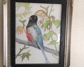 Downtown abbey or country cottage or old fashioned Victorian style bird watercolor wall decor home art original painting by crow baby press