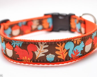 Squirrel Dog Collar / Frisky Squirrels in Brown / Custom Dog Collar / Brown, Orange