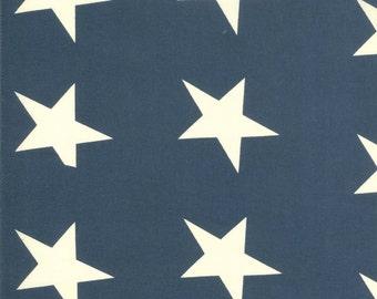 Bar Harbor 1 yard Star Bunting 49039