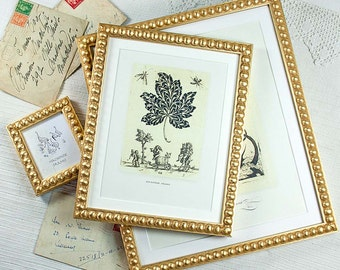 3 Narrow Gold Boules Frames 4x6 inch/5x7 inch and Mini Photo Sizes/Wedding/Bridesmaids Gift/Office Desktop Deluxe Photo Frames