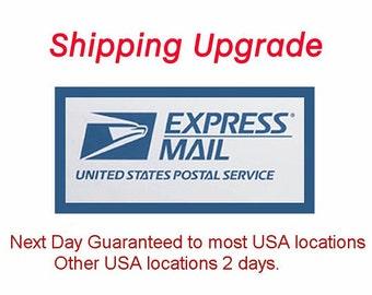 Upgrade Service RUSH shipping