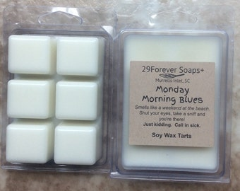 Monday a.m. Blues Soy Wax Tarts - Coppertone type soy wax tarts - Coppertone type soy wax melts - beach scent soy wax tarts