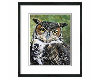 Great-horned Owl art PRINT birds of prey raptor