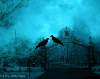 Surreal Gothic Raven Gate Print, Ravens On Gate, Blue Surreal Ravens Gate Print, Haunting Eerie Spooky Ravens, Gothic Blue Ravens On Gate