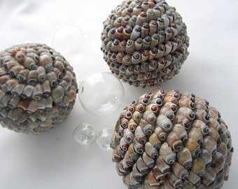 "Beach Decor Shell Balls - Nautical Seashell Balls - Shell Orb - Beach House Decor - Coastal Home Decor - Beach Home Decor -3.75""-  #CSBALL"