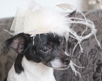 Ivory color   mini  hat with   feather and   bow for dog or cat