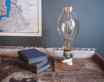 Antique  Light Bulb on Display Stand