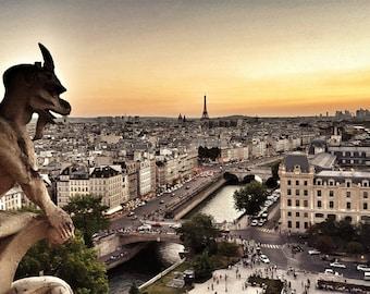 Sunset View of Paris - Fine Art Original Photograph (Chimera, Notre-Dame Cathedral, Eiffel Tower)