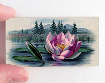 Water lily Pond Magnet - Eco Friendly Wood Magnet - Radiant Orchid Gift