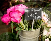 Paris Print, Paris Photography, Pink Flowers, Floral Wall Art, Paris Fine Art Photograph Home Decor, Paris Flower Photo - Market Flowers