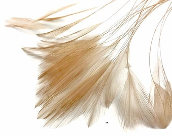 Stripped Hackle Feathers, 1 Dozen - BEIGE Stripped Rooster Neck Hackle Feather : 581