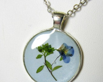 Blue is Veronica,   Pressed Flower Pendant, Real Flowers in Resin,  (1939)