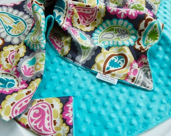 Baby Girl Blanket - Paisley Beat with Aqua or Pink Minky