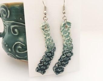 Ombre Dangle Earrings