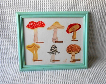 Watercolour Mushroom Framed Wall Hanging Art Fungi Mushrooms