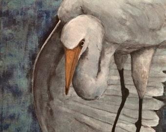 White Egret Fishing