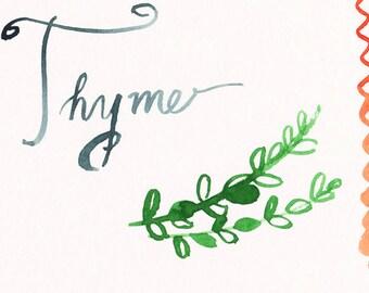 Herb Series - Original Watercolor - Thyme