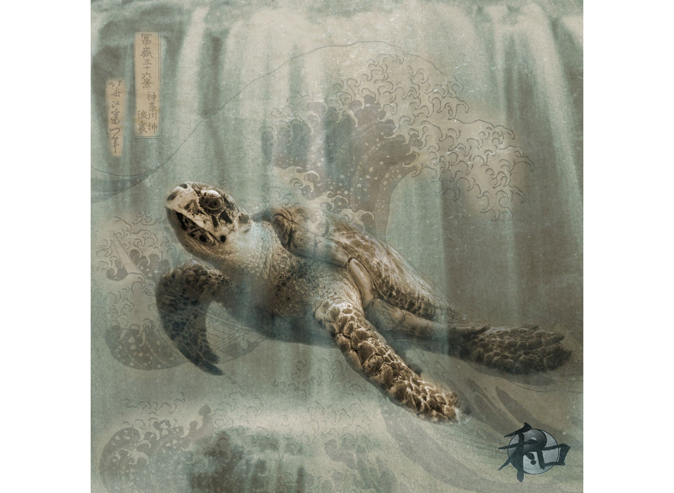 Home Decor Wall Art Sea Turtle Sepia Photo Collage Fine