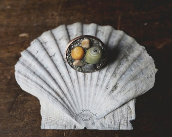 Hav - adjustable ring with shells, stones and pyrite
