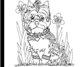 yourkie doags coloring pages | Teacup Yorkie Puppies Drawings Sketch Coloring Page