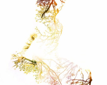 Surreal Portrait, Fine Art Photography,  Woman, Portrait, Nature, Trees, Double Exposure, Abstract, Branches, Girl, Whimsical, Dreamy, art