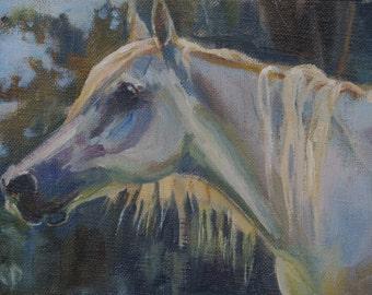 White horse painting, horse painting, Arabian horse, farm animal, equine art, equestrian art, original oil,