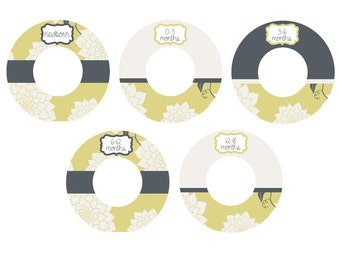 The Peanut Shell STELLA closet dividers