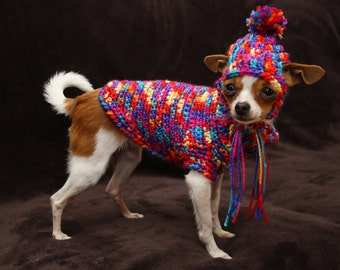 Harness Sweater and hat for small breed dog ( approx 2 to 5 lbs) red circus
