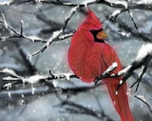 Red Cardinal Abstract Animal Giclee Archival Art Print