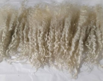 Raw Teeswater Wool / Doll Hair / Lock Spinning / Felting / Tail Spinning (T-6)