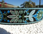 """Girl Dog Collar, Quick Release  or, Martingale Collar, Blue Zinnia 1"""" wide adjustable"""