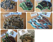 Handmade Turtles and Tortoises Stickers & Magnets