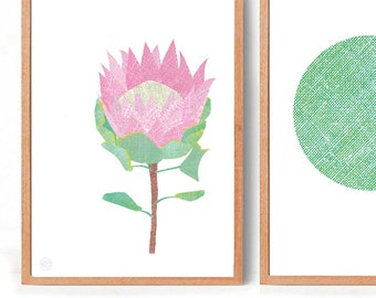 PROTEA  Art Print with Free Aus Shipping!