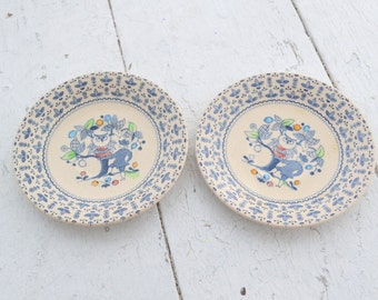 1970s Sugar and Spice Ironstone Saucers, Set of 2
