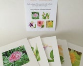 GARDEN FLOWER SET, Watercolor Image, Set Five Cards, Blank Greeting Card, Fold Over Card, Floral Cards