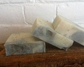 Luffa & Seaweed with Activated Charcoal Soap/ Artisan Soap / Cold Process Soap- 4 oz.