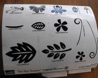 Stampin Up - Stamp Set - Tropical Blossoms - Set 66