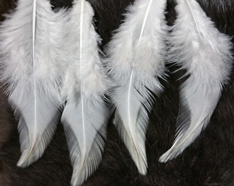 "Natural Ivory White Rooster Saddle Feathers - Lot of 25 - 4""-5"""