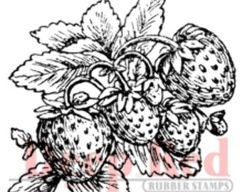 Deep Red Rubber Stamp Strawberries Spring Fruit