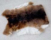 Tanned Brown & White Rex Rabbit Pelt