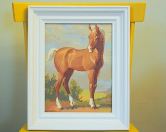 Beautiful Horse Paint By Numbers Framed Art in bold white solid wood frame