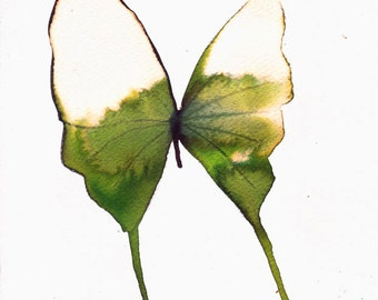 """white gold and spring green butterfly  8 X 10"""" original watercolour painting"""