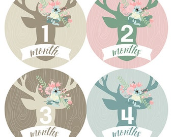 FREE GIFT, Baby Month Stickers Girl, Woodland Monthly Baby Stickers Girl, Deer, Antlers, Pink, Mint, Tan, Beige, Flowers, Baby Shower Gift