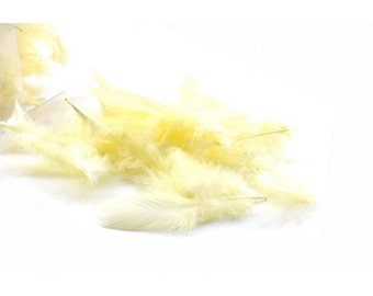 Marabou Natural Feathers gr 20