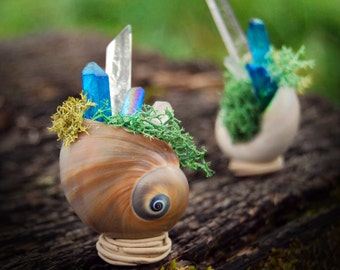 Magic Crystal Snail Shell altar