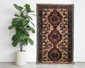 4x6 Hand Knotted Baluch Wool Rug