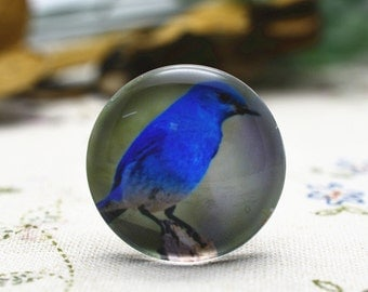 4pcs 25mm Round Handmade Photo Glass Cabochon - Bird